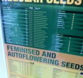 Seed...