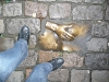 Mes petits pieds...